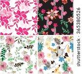 seamless  spring flower...   Shutterstock .eps vector #365380526