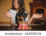 Woman And Toy Terrier With Dog...