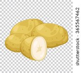 potato isolated on transparent... | Shutterstock .eps vector #365567462
