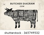 Stock vector cut of beef set poster butcher diagram cow vintage typographic hand drawn vector illustration 365749532