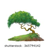 a tree isolated on white... | Shutterstock . vector #365794142