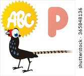 funny comic reading animals abc ... | Shutterstock .eps vector #365848136
