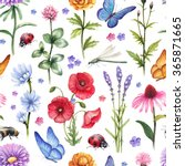 Wild Flowers And Insect...