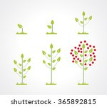 growing tree icon set | Shutterstock .eps vector #365892815