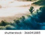 mist. forested mountain slope...   Shutterstock . vector #366041885