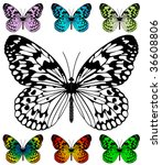 Butterfly Vector Template With...