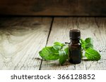 essential oil of peppermint in... | Shutterstock . vector #366128852