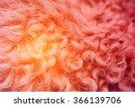 Close Up Of A Orange Dyed...