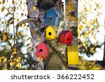 Colorful Bird Houses On Tree...