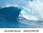maui  hi   january 16 2016 ... | Shutterstock . vector #366224018