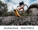 lady hiker walking through the... | Shutterstock . vector #366374012