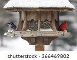 Cardinal At Bird Feeder Snow...