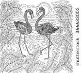 Hand Drawn Birds   Flamingos In ...