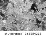 abstract natural marble black... | Shutterstock . vector #366654218