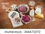 foods highest in vitamin b12 ...   Shutterstock . vector #366671072