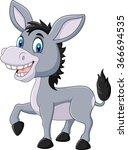 Adorable Donkey Isolated On...