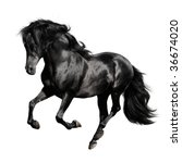 Black Horse Pura Raza Espanola...