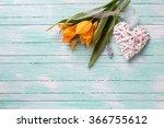 fresh  spring yellow tulips... | Shutterstock . vector #366755612
