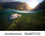 fishing. close up shut of a... | Shutterstock . vector #366807152