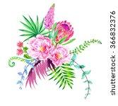 romantic botanical illustration ... | Shutterstock . vector #366832376