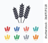 agricultural sign icon. gluten... | Shutterstock . vector #366919118