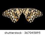 concept design. butterfly wings ... | Shutterstock . vector #367045895