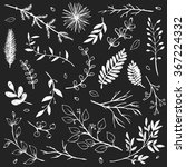 hand drawn vintage floral... | Shutterstock .eps vector #367224332