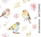 birds and spring flowers... | Shutterstock . vector #367316462