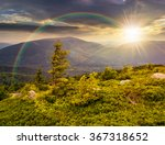 lonely conifer tree and stone on the edge of hillside with path in the grass on top of high mountain range in evening light under the rainbow - stock photo
