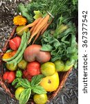 basket of vegetables just... | Shutterstock . vector #367377542