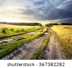 Dirt Road In Field Of Yellow...