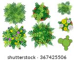 foliage   vector illustration | Shutterstock .eps vector #367425506