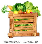 many vegetables in a wooden box ... | Shutterstock .eps vector #367536812