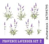 vintage set of lavender flowers ... | Shutterstock .eps vector #367595795
