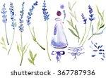 vintage set of lavender flowers ...   Shutterstock . vector #367787936