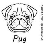 vector image of an pug dog face ...