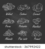 vector set of hand sketched... | Shutterstock .eps vector #367992422