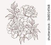 vector peony flower isolated on ...   Shutterstock .eps vector #368014568