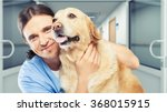 Stock photo vet 368015915