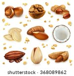 nuts in the shell  vector icon... | Shutterstock .eps vector #368089862