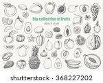big collection of fruits on... | Shutterstock .eps vector #368227202
