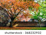 Beautiful Autumn In Winchester...