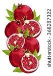 pomegranate fruit isolated on... | Shutterstock .eps vector #368287322