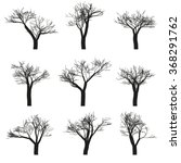 set of nine deciduous trees... | Shutterstock . vector #368291762