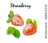watercolor sprig juicy berries. ... | Shutterstock . vector #368312132