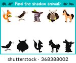 mirror image five different...   Shutterstock . vector #368388002