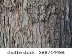 Oak Bark. You Can Use Almost...
