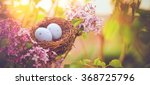 Stock photo bird nest in a flowering tree with easter eggs for easter 368725796