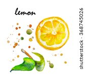 juicy lemon watercolor on paper.... | Shutterstock . vector #368745026