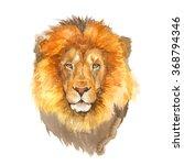 Lion Watercolor Illustration